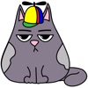 Fat cat Smoky - stickers with cats for iMessage.
