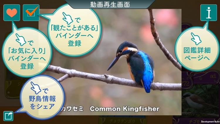GPS動く野鳥図鑑400 screenshot-3