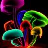 Neon Wallpapers – Neon Arts & Neon Pictures HD - iPhoneアプリ