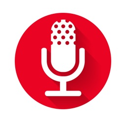 Voice recorder, audio recorder