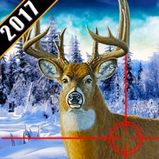 Activities of Deer Hunting 2017 Pro: Ultimate Sniper Shooting 3D