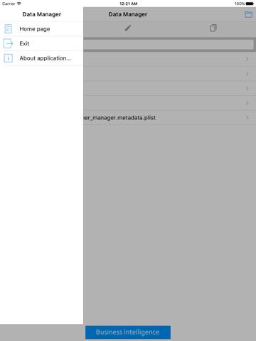 Data Manager XE - náhled
