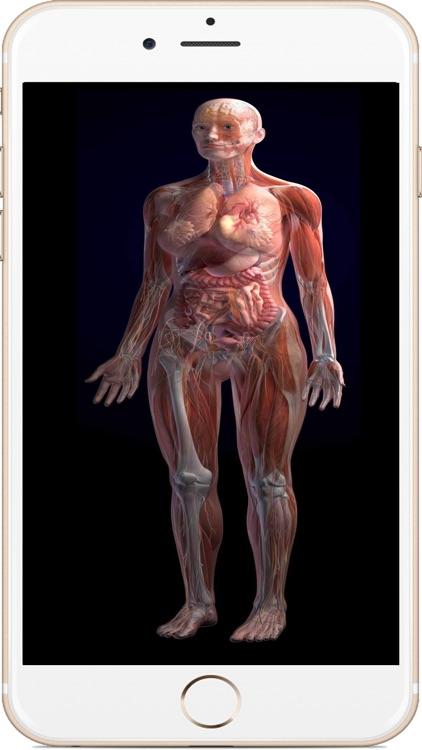 全套人体解剖 screenshot-4