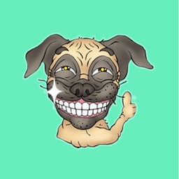 Emotional Pug!