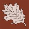 Maria Thun Biodynamic Calendar Reviews