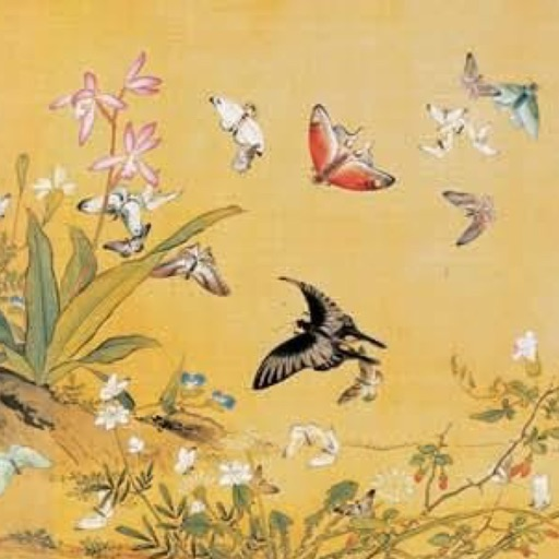 Flower and bird - Chinese painting series
