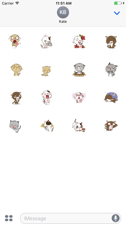 Animated Stary Cat Stickers For iMessage screenshot-4