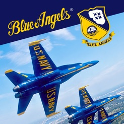 Blue Angels - Aerobatic Flight Simulator
