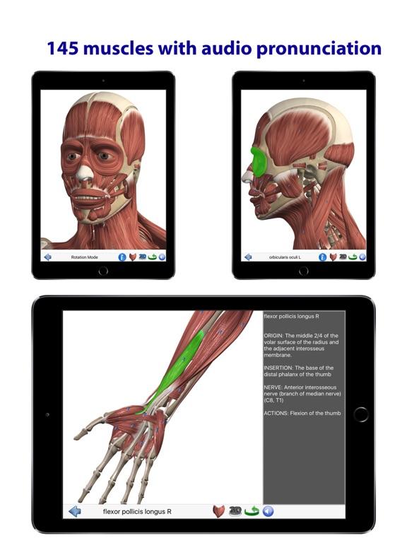 Visual Anatomy   App Price Drops