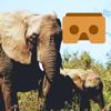 PAUL KENDRICK - 360 VR Elephant - Nature VR Apps for Kids artwork