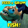 FISH & GROW - FEED SIMULATOR