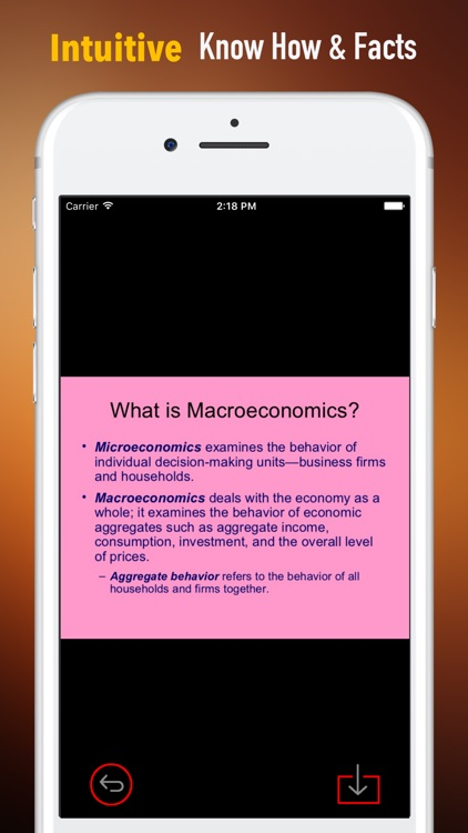 Macroeconomics Glossary-Study Guide and Terms