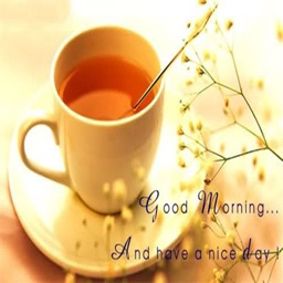 Good Morning Messages And Greetings