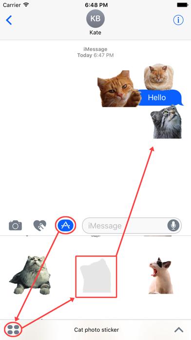 Cat photo sticker | App Price Drops