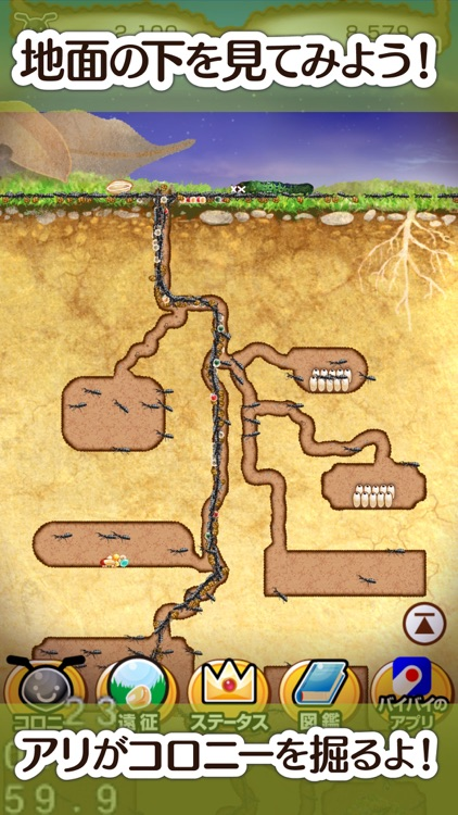アリの巣コロニー - ほのぼの観察育成ゲーム