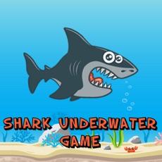 Activities of Shark Underwater Game