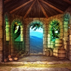 Activities of Escape Game Medieval Palace