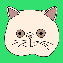 Funny Crazy Cat Stickers
