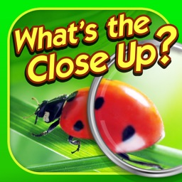 What's the Close Up? - Close Up Pics Photo Quiz