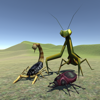 Bug Battle 3D