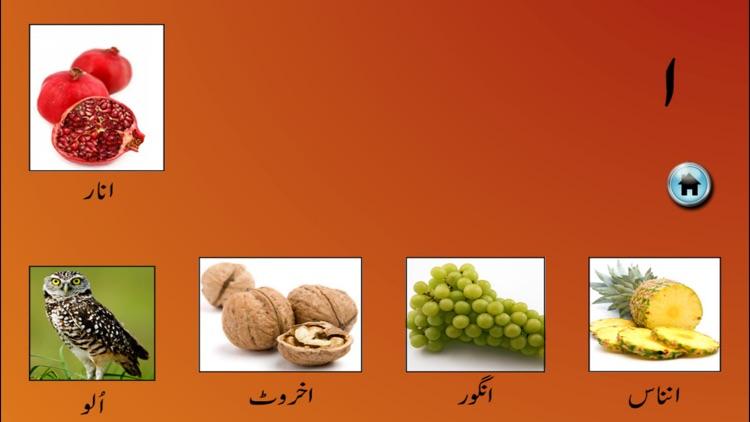 My First Book of Urdu HD