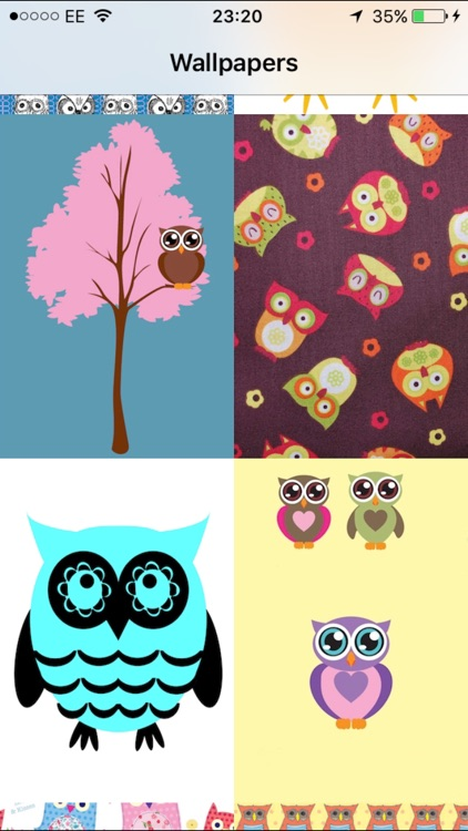 Cute Owl Wallpapers By K Veitch