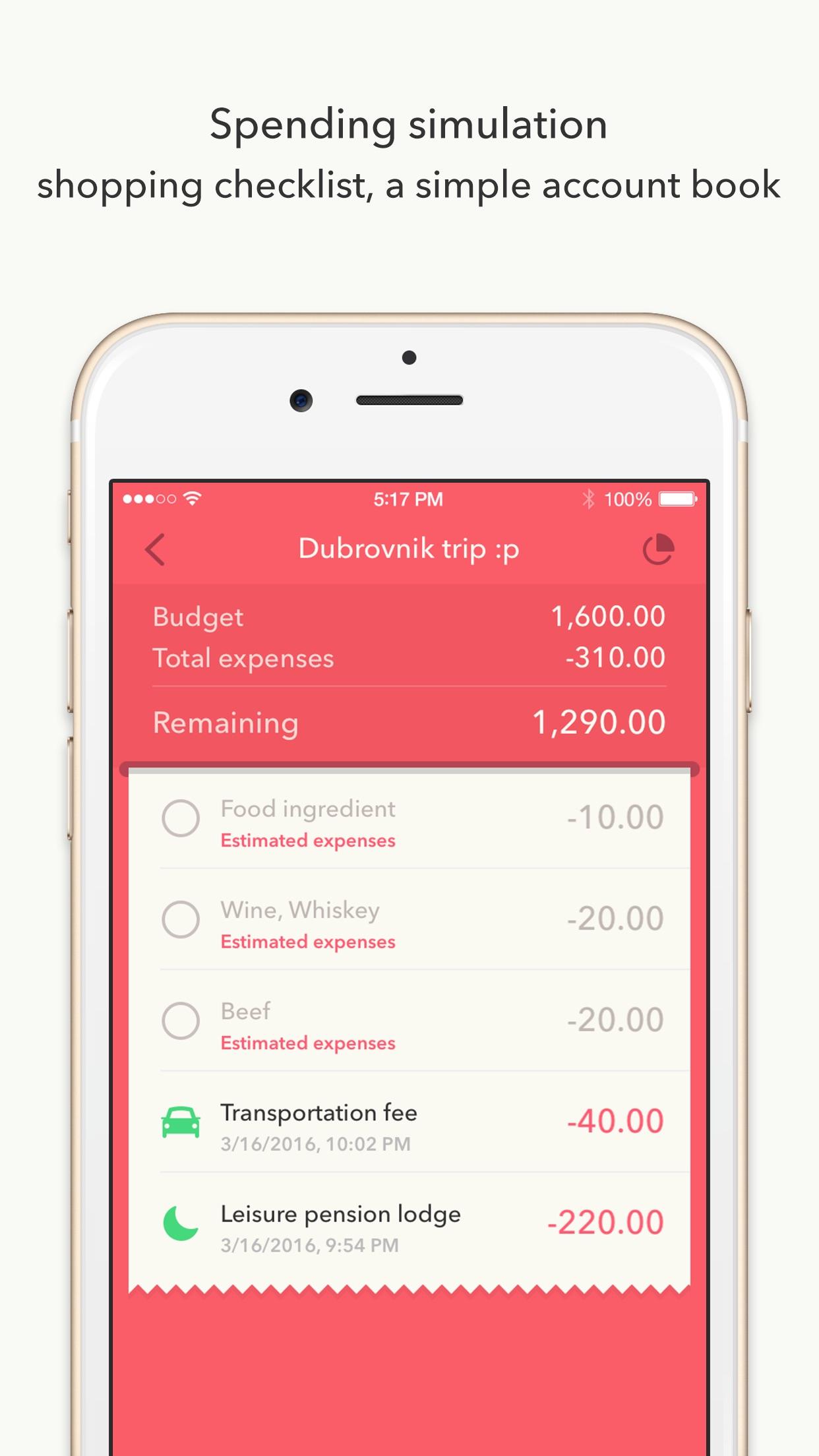 Minibudget Pro - Managing on a low budget Screenshot