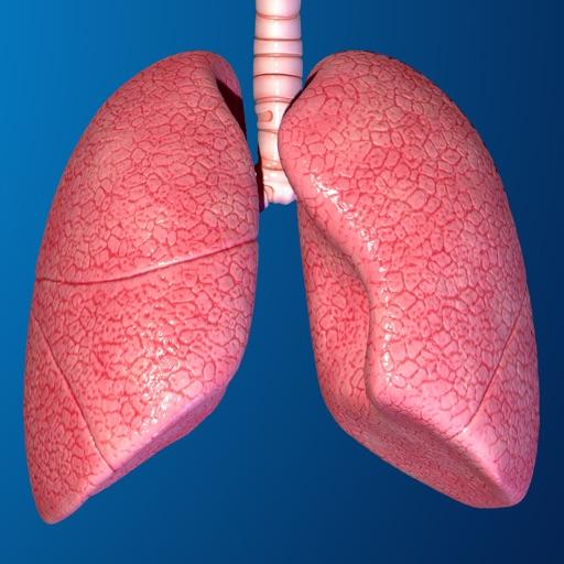 Human Body Parts : Lungs Quiz icon