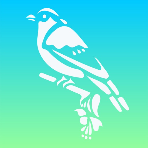 Bird Calls: SoundBoards of Chatter and Caller