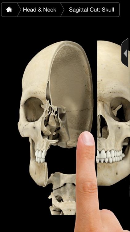 Skeleton System Pro III-iPhone