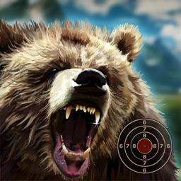 Black Bear Target Shooting