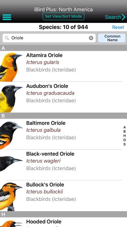 iBird Plus Guide to Birds