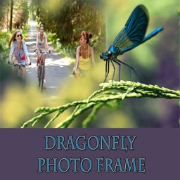 Dragonfly HD Photo Collage Frame