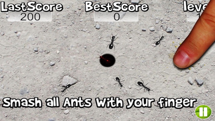 Squish these Ants