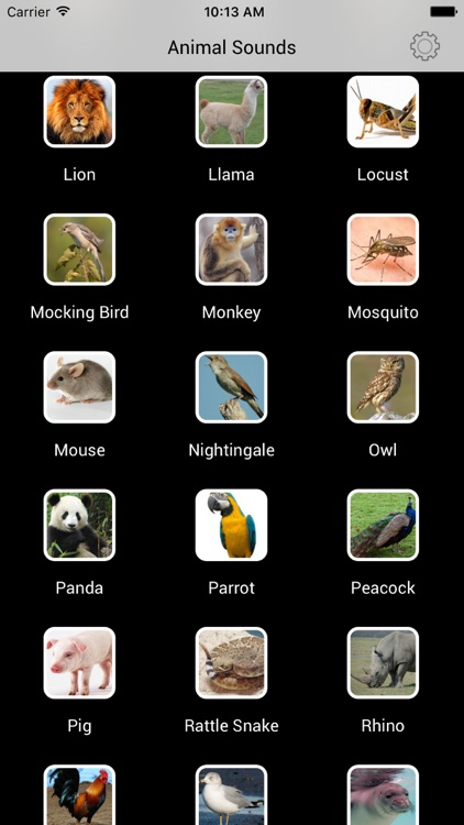 Animal Sounds - Best Soundboard of Animals
