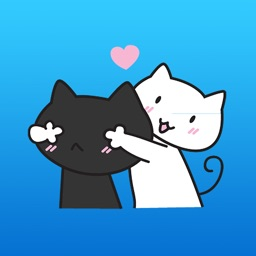 Black and White Couple Cat