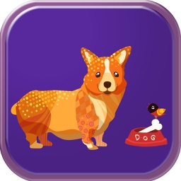 Free Games Learning ABC English Vocabulary