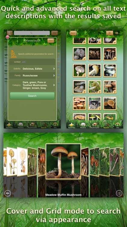 Mushrooms: Great Encyclopedia of Fungi screenshot-3