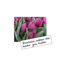 Flowers With Love Greeting Card stickers by wenpei