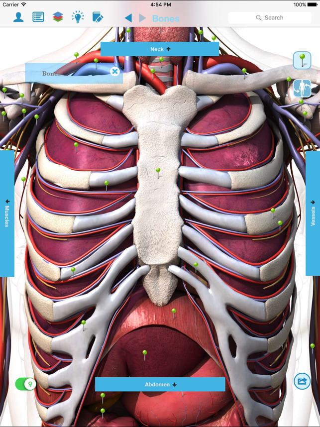 Anatomía y fisiología - anatomía del cuerpo humano en App Store