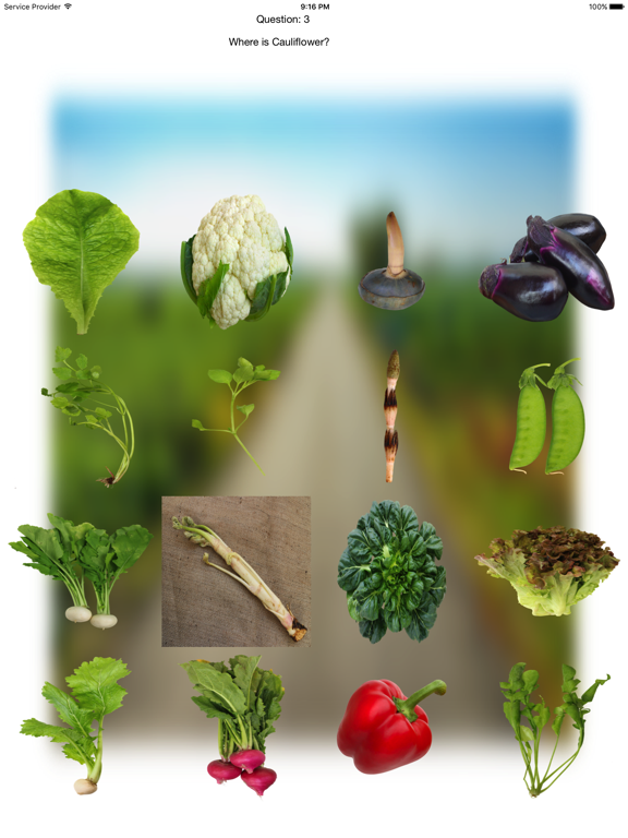 Vegetables Touch ~ simple trivia game ~ screenshot 10