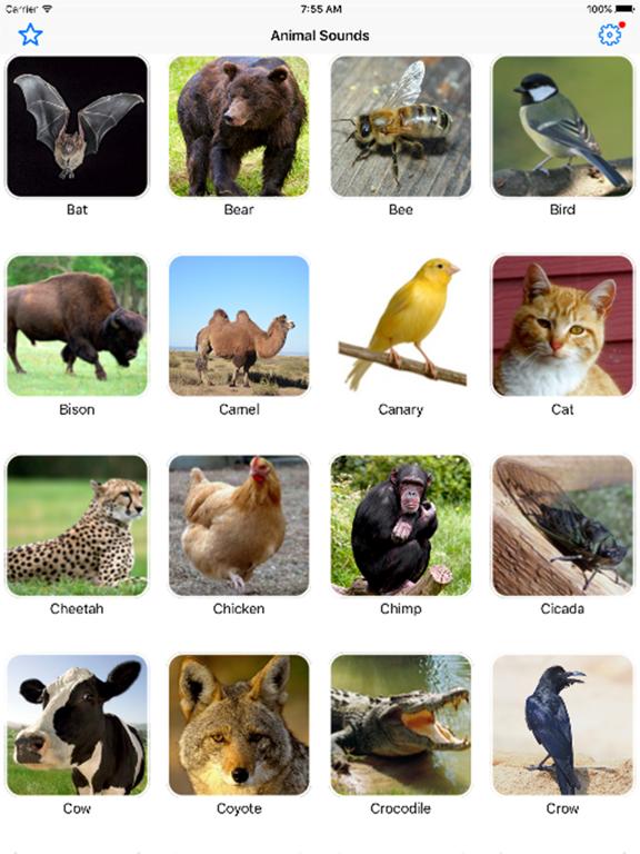 Animal Sounds Pro Farm Jungle Voices for Kidsのおすすめ画像2