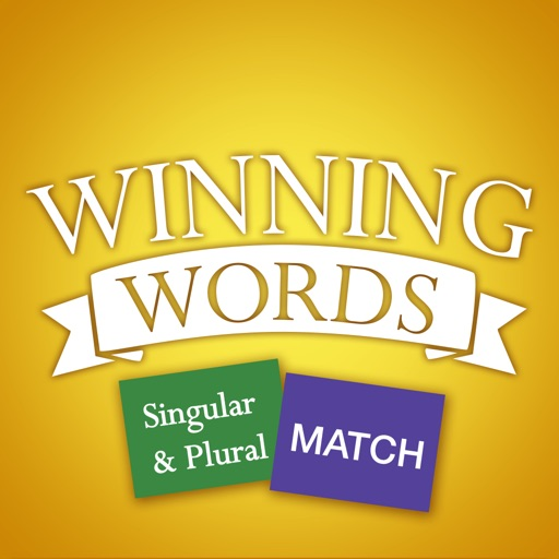 Singular and Plural Match