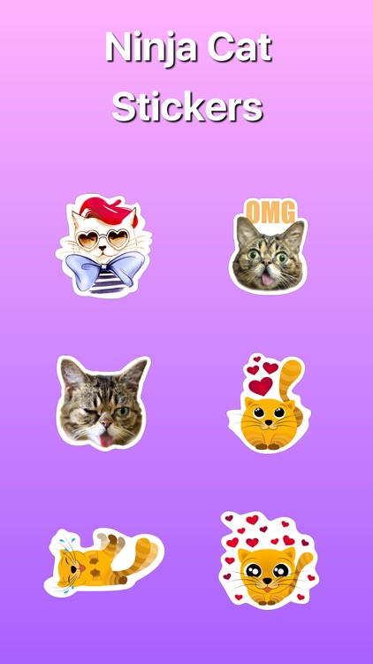 Ninja Сat Want to Play Stickers