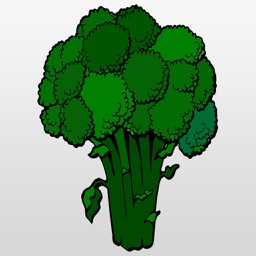 Broccoli : A Delicious Vegetable for your Tummy