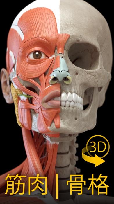 筋肉   骨格 - 解剖学3D アトラススクリーンショット