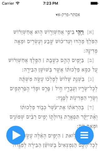 תיקון קוראים - מגילת אסתר - náhled