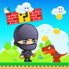 Activities of Cool Ninja Adventure