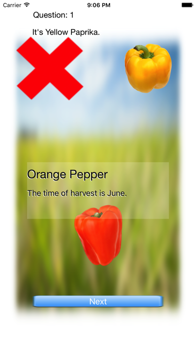 Vegetables Touch ~ simple trivia game ~ screenshot 2