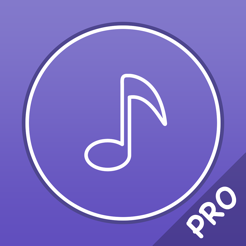‎Music Player Pro - Player for lossless music